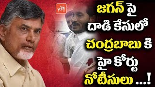 High court Issues Notice to Chandrababu Naidu about YS Jagan Attacks Incident