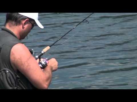 клев риби житомир