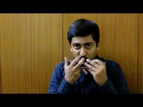 Ye Mera Dil Pyar Ka Deewana (Harmonica)
