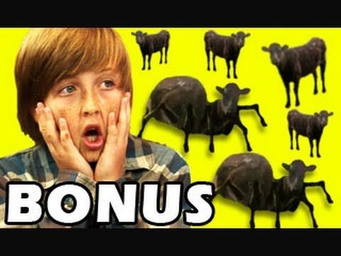 Bonus kids react to cows amp cows amp cows youtube