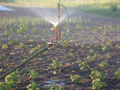 Как самому сделать поливалку для огорода своими руками 13