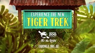 Step into Sumatra at Taronga Zoo's new TIGER TREK