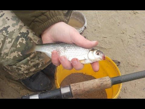 рыбалка в кривом роге весна 2017