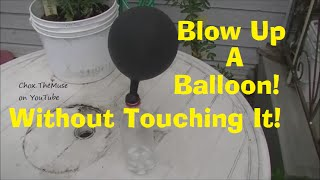 Blow Up Balloons! Baking Soda and Vinegar Experiment 1