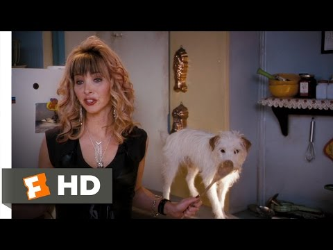 Hotel For Dogs (3/10) Movie CLIP - Needs More Cinnamon (2009) HD