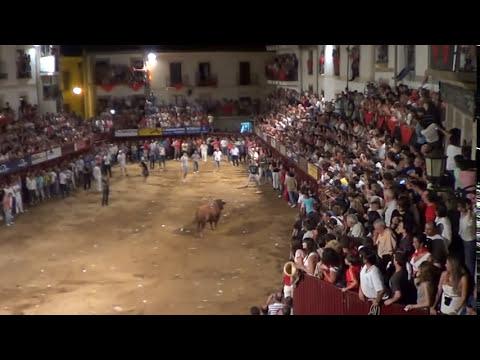 San Juan 12 Coria. Día 24 madrugada. Salida a la Plaza. Cogida sin consecuencias.