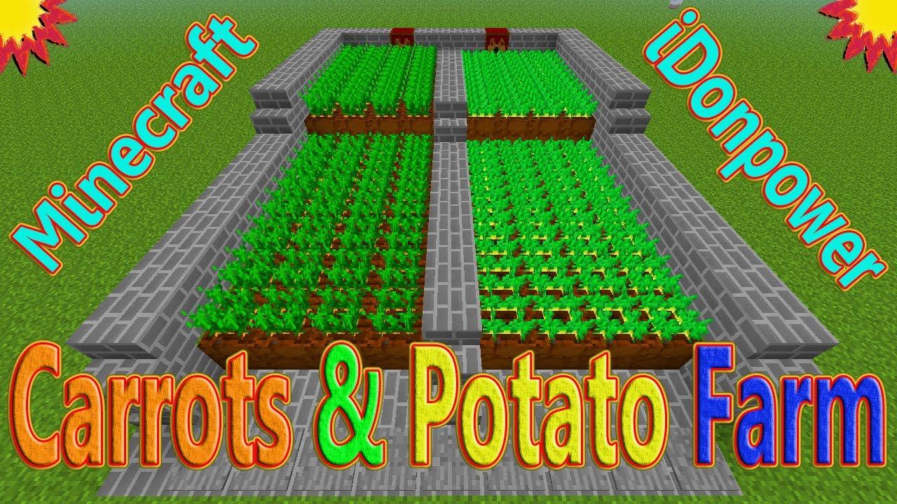 Carrots Potato Farm