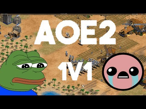 This Aoe2 Game Almost Killed Me Youtube