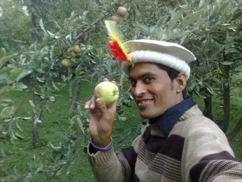 Saib Ka Bagh İn Kalash Velley Chitral Pakistan