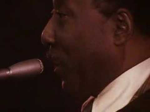 Muddy Waters plays