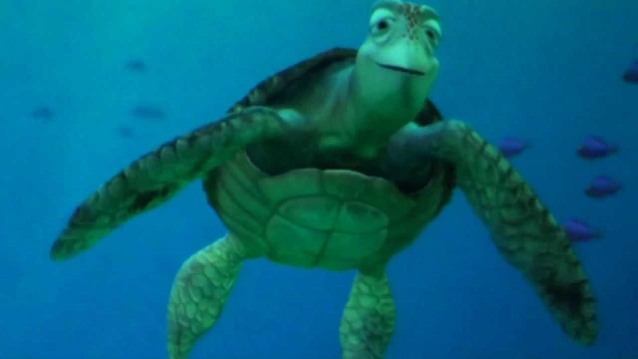 イラスト かめ イラスト : タートル・トーク TurtleTalk ...