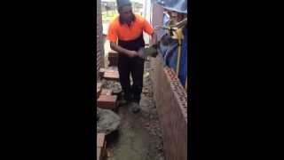 Bricklaying immi