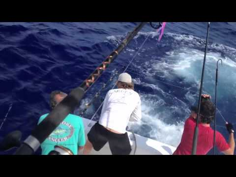 Daytime swordfishing in the Florida Keys on board Caribsea Charters - 520lbs
