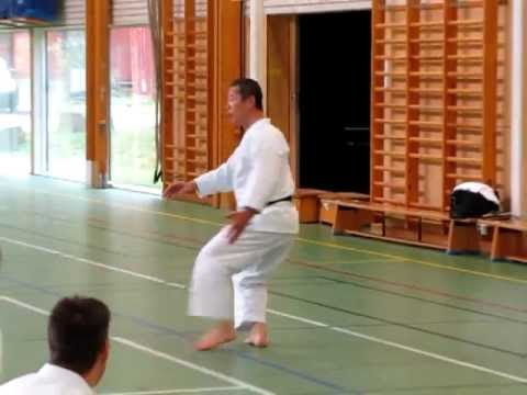 Kagawa-sensei Demonstrates Unsoku For The Stance Kokutsu-dachi video