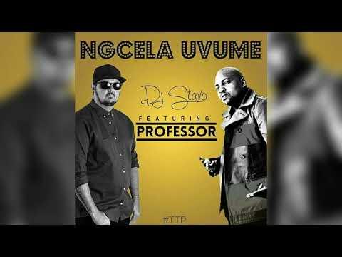 DJ Stavo ft  Professor-Ngcela Uvume