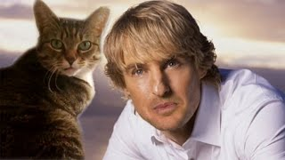 Owen Wilson as a Cat
