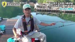 橋本直の夏の筏チヌ攻略in南伊勢 大チヌを狙え