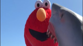 SHARK PUPPET MEETS ELMO...
