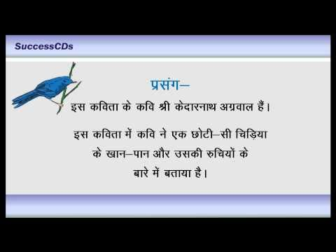 Vah Chidiya Jo - Cbse Class 6 Hindi Poem Explanation (para-1) video