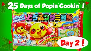 25 Days of Popin Cookin! - Day 2 Making Animal Gummy Candy Toy Reviews For You