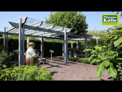 Gartengestaltung Garten der Jahreszeiten I Pflanzen-Kölle