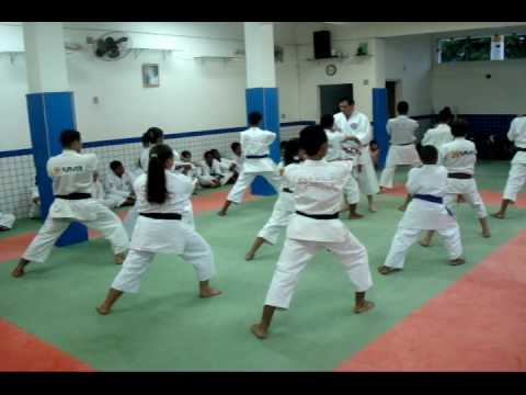 Wong Karate-Do, Shorin-Ryu SHIN SHU KAN