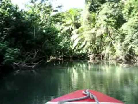 A boat ride up the Indian RIver in Dominica