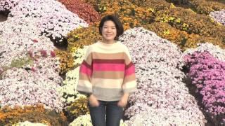 中井CM1小さな幸せ編
