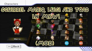 Squirrel Mario, Luigi And Toad From NSMBU in Mario Kart Wii! (hack/mod)