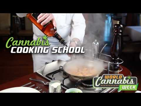 Cannabis Cup Tour 420 Denver Colorado 2013