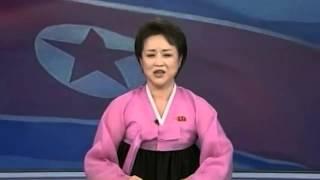 Over-Enthusiastic North Korea TV Anchor Announces Rocket Launch