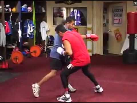 Advanced Boxing Techniques & How To Fight Different Fighters Image 1