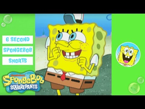 SpongeBob SquarePants   6 Second SpongeBob Shorts   Nick