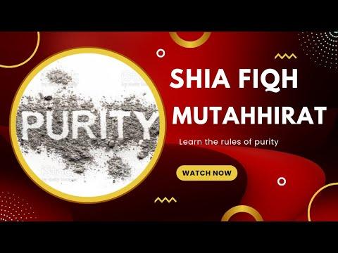 Shia Ahkam: 02 Purifiers مطهرات