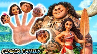 ★ MOANA Finger Family Song ★ DISNEY Daddy Finger Nursery Rhyme by ANIMALSKETCH w/ MAUI & BABY MOANA★
