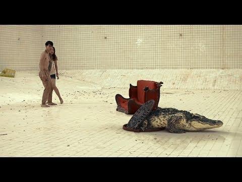 一部让人绝望的电影,情侣被困6米深的泳池,下面还有一只大鳄鱼!
