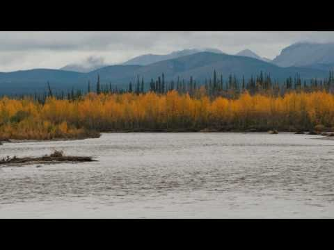 Dempster Highway and Tombstone Territorial Park (Part 5: To Eagle Plains and back again)