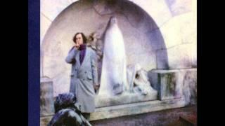 Watch John Frusciante Unchanging video