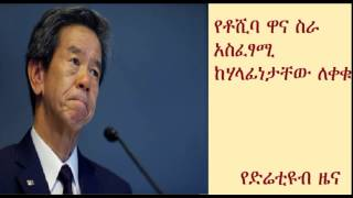 CEO of Toshiba Electronics Company resigned