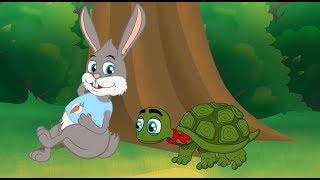 A Lebre e a Tartaruga (O Coelho e a Tartaruga)  Historia Completa   Desenho animado infantil