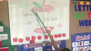 Parts of an Apple preschool song