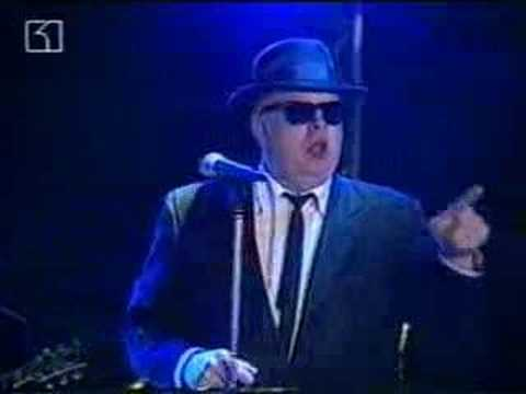 Blues Brothers - Going Back To Miami Live