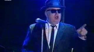 Blues Brothers Band - Going back to Miami
