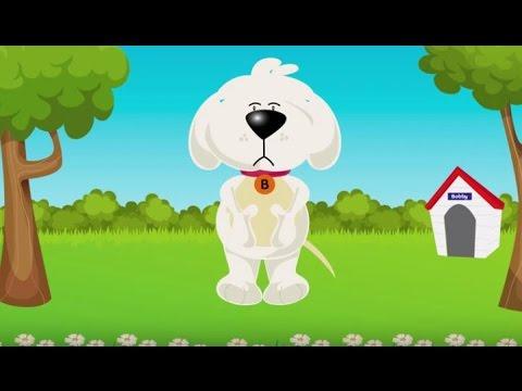 El perro Bobby