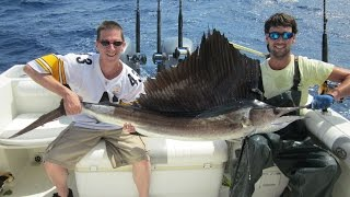 Teezher Charters NE Big Rock Gulfstream Sailfish