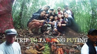 Travel To Tanjung Puting National Park