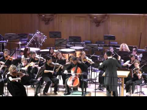 П. И. Чайковский Вариации на тему рококо для виолончели с оркестром Борис Андрианов (виолончель)