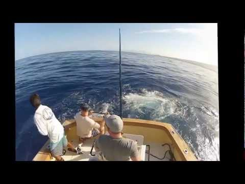 Kona Fishing Charter Reviews