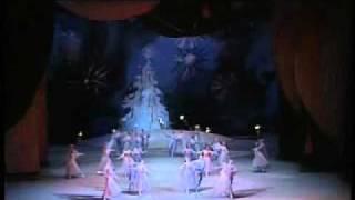1989 Bolshoi Ballet Nutcracker Excerpts 10 12 By Grigorovich Tchaikovsky Waltz Of The Flowers