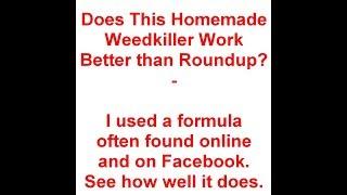 Homemade Weedkiller Vs Roundup - Which Works Best - SHORT Version